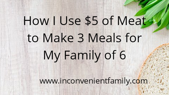 How I Use $5 of Meat to Make 3 Meals for My Family of 6!