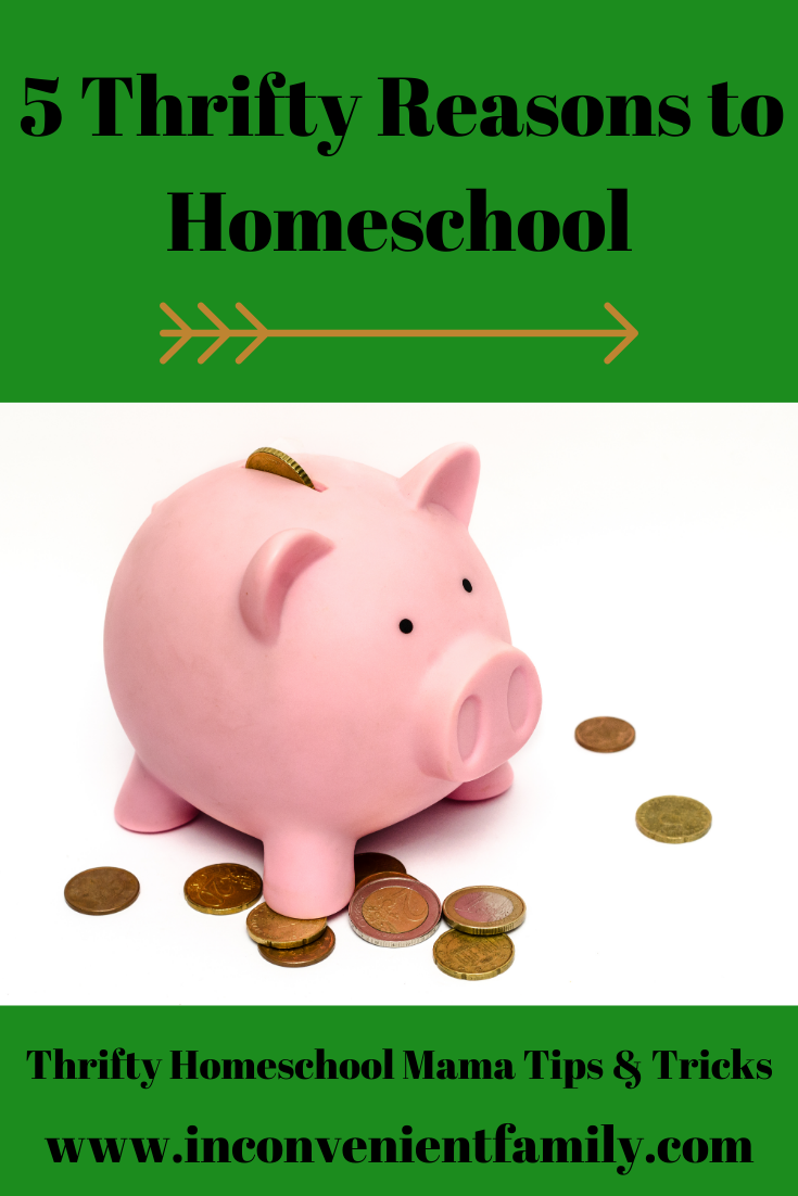 5 Thrifty Reasons to Homeschool