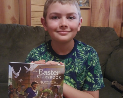 """The Easter Storybook"" by David C Cook"